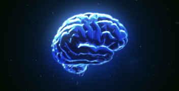 brain electrode technology